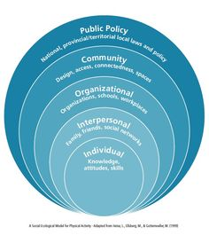 social ecological model | Social-Ecological Model More