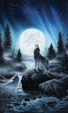 Howling wolf iphone wallpaper - Everything - # . - Howling wolf iphone wallpaper – Everything – screen # - Iphone Wallpaper Wolf, Beste Iphone Wallpaper, Tier Wallpaper, Animal Wallpaper, Trendy Wallpaper, Black Wallpaper, Iphone Wallpapers, Anime Wolf, Wolf Background