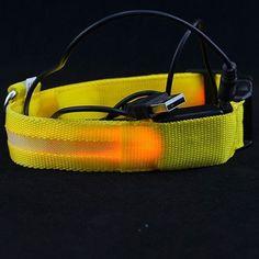 LED Flashing Night-Light Pet Collar,USB Charging S-XL Adjustable FREE Shipping