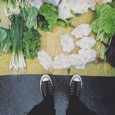 . hi mushrooms! :-D))) . #s_s_magiccarpet #s_s_ilovemarkets #market #市場 #朝市 #洋菇 #mushroom