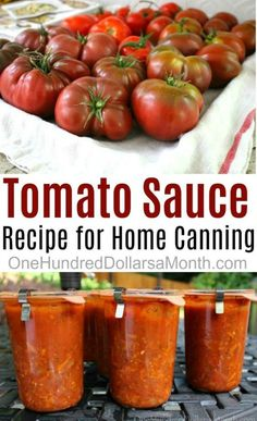 I've been using this simple tomato sauce recipe from Simply in Season for a few years now and it's a wonderful way to use your garden fresh tomatoes and enjoy them throughout the winter months when we are all yearning for something homemade. Just open a jar, pour over pasta and viola! Dinner is served. …