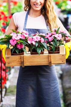 Welcome spring to your garden with savings! Pick up quality color perfect for the sun or the shade. Dream Garden, Home And Garden, Random Gifts, Save Mother Earth, Shade Garden Plants, Butterfly Plants, Texas Gardening, Summer Dates, Wood Boxes