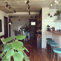 kan2さんの、Lounge,観葉植物,スポットライト,ルイスポールセン,サブウェイタイル,NO GREEN NO LIFE,定点観測,大規模修繕,ベランダの植物を取込み中についての部屋写真