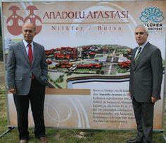 Anadolu Arastası Projesi