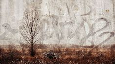 "Karla Doell, Tree Muse  36 "" x 64""  mixed media on steel"