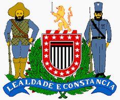 POLÍCIA MILITAR ESTADO DE SÃO PAULO (PMESP)  - Pesquisa Google