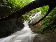Falls on Crane Creek