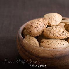 Datça'nın florası denilince kuşkusuz akla öncelikle badem geliyor. / The flora of Datça is known primarily with almonds. / Die Flora von Datca ist durch Mandeln bekannt. | http://timestopsmugla.com/tr/mugla-faunasi-ve-florasi