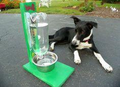 DIY Automatic Pet Water Bowl