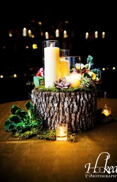 wood stump with candles & succulents @Vista West Ranch I love how it looks like there's a whole little fantasy world created on top of the wood