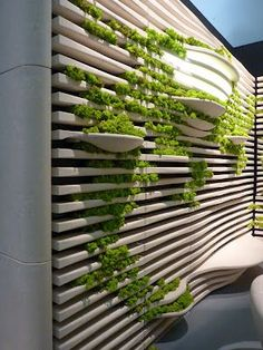 Grassi Pietre idea for planters use fence add boards then have planters stuck in it at various levels and in varying sizes: