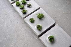 Urban growth series of paving stones that host vegetation, by allowing flexible customization and integration of greenery on the paved urban floor. Grey to Green // Caroline Brahme Concrete Plant Pots, Concrete Pavers, Concrete Design, Gravel Patio, Cement Planters, Concrete Blocks, Wall Planters, Concrete Garden, Succulent Planters