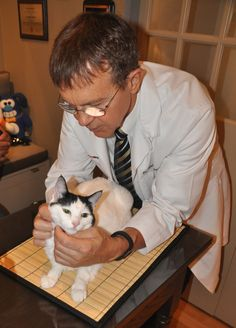 Mao was very well behaved during her exam with Dr. Peterson.  www.hypurrcat.com