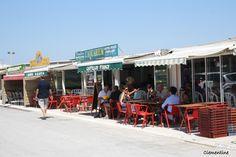Le blog de Clementine: Manger des huîtres à l'Aquarium à Leucate