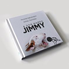 A Dog Named Jimmy Book // Funny And Cool Dog Drawings & Photo Illustrations, Jimmy Choo Bull Terrier by Rafael Mantesso British Bull Terrier, English Bull Terriers, Dog Names Unique, Diy Dog Collar, Cool Dog Houses, Funny Illustration, Illustrations, Funny Dog Pictures, Dog Paintings