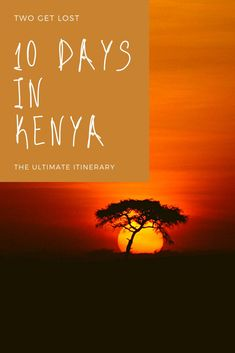 The perfect itinerary for the perfect 10 days in Kenya. From tourist hot spots to off the beaten track destinations, we've got you covered! #kenya #travel #africa #safari #kenyatravel Kenya Travel, Africa Travel, Winter Destinations, Travel Destinations, Best Countries To Visit, Safari Holidays, Christmas Travel, Best Places To Travel, Winter Travel