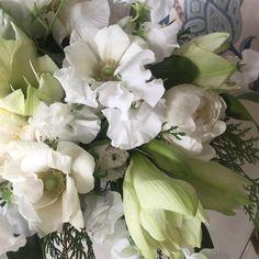 Winter lovelies & yummies #anenomes #amaryllis #peonies #tulips #sweetpeas #cedar #whiteflowers #elegant #alwayswelcome #holidaytable #tabledecor #tablestyling #tabledesign #clientsfavorite