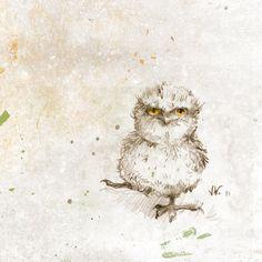 Podarge gris Chick. Oiseau. Chouette. Tirage par RenataandJonathan