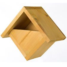 Johnston and Jeff All Year Solid Pine Wooden Robin Bird Nest Nesting Box