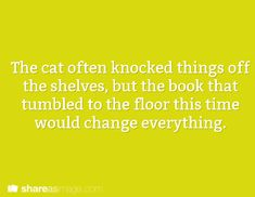 The cat often knocked things off the shelves, but the book that tumbled to the floor this time would change everything.