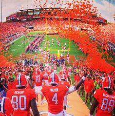 Can't wait for football season Football Run, Clemson Football, College Football Teams, Clemson Tigers, Football Season, Tiger Love, University Of South Carolina, College Fun, Orange Is The New Black