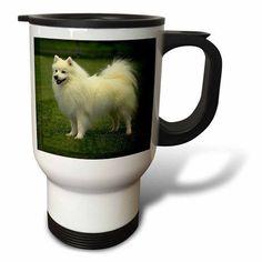 3dRose American Eskimo, Travel Mug, 14oz, Stainless Steel