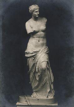 Venus of Milo Roman Sculpture, Sculpture Art, Photo Realism Tattoo, Venus Tattoo, Interactive Museum, Statue Tattoo, Wolves And Women, Art Through The Ages, Greek Statues