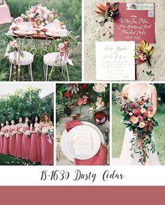 Dusty Cedar Autumn Wedding Inspiration Board