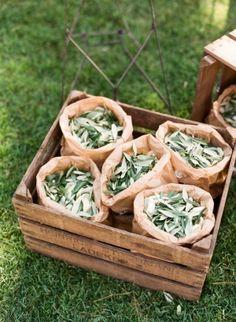 Olive Leaves in Kraft Paper Bags