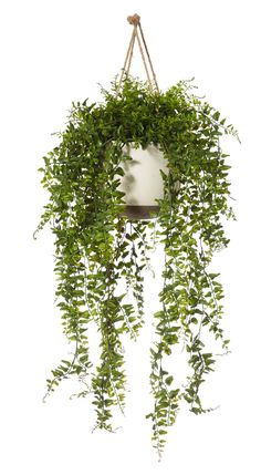 newest images hanging plants indoor fake wedding technology : There are lots of strategies to create households for your flowers! We all can show them in space-saving hierarchy place appears, stay these folks in . Fake Plants Decor, Faux Plants, Hanging Plants, Plant Decor, Indoor Plants, Ikea Fake Plants, Indoor Garden, Real Plants, Small Artificial Plants