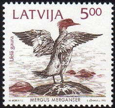 File:19921003 5rub Latvia Postage Stamp C.jpg