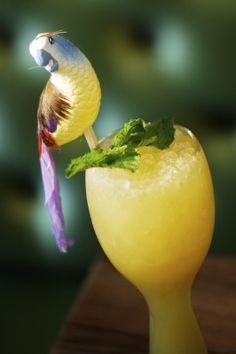 "A great ""101"" on Tiki Drinks from Trader Vics Bartender"