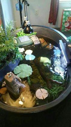 The 12 Coolest Pet Turtle Habitats (with photos) Turtle Tub, Turtle Aquarium, Turtle Pond, Pet Turtle, Aquatic Turtle Habitat, Aquatic Turtle Tank, Aquatic Turtles, Box Turtle Habitat, Water Turtles