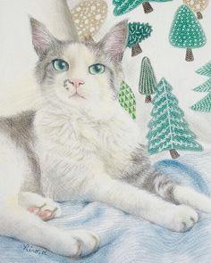 Christmas Pets, Christmas Animals, Cat Art, Pet Portraits, Instagram, Computer Mouse, Dogs, Cat Breeds, Paint