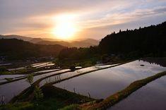 ゴールデンウィーク終盤の5月5日(火)、早朝から大阪府の能勢町にある長谷の棚田に...