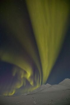 Aurora Borealis Lights