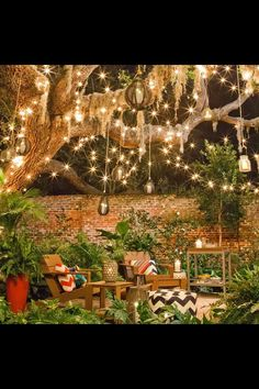 Willow tree Christmas lights. Whimsical. Old fashioned light bulbs. Edison bulbs. Outdoor Christmas lights.
