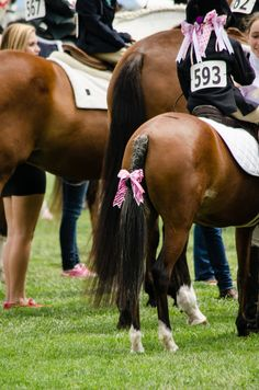 Maybe a little excessive on the hair bows, but I love the idea of matching bows in little girls hair to a bow in the tail braid! Love pony kids!