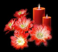 Discover & share this Animated GIF with everyone you know. Romantic Candles, Beautiful Candles, Candels, Pillar Candles, Gifs, Nature Gif, Cheap Human Hair, Good Night, Cool Pictures