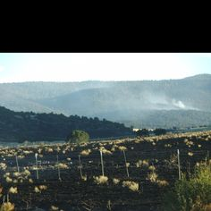Wildfires out by Eager/Springerville.AZ