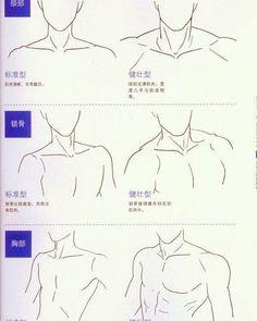 Resultado de imagen para profile drawing chest