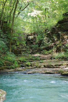 The ninth place I would visit is Greer Springs, Missouri, to explore and see the Eleven Point River. It has pretty, blue waters and tall trees that make it look almost majestic.