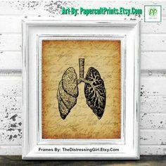 VINTAGE ANATOMY ART, Vintage Anatomy Lungs Art, Printable Wall Art, Printable Art, Art Print, Instant Download, Vintage Wall Art -  PP0241