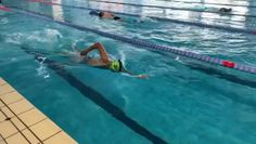 Best Swimming Workouts, Swimming Workouts For Beginners, Swimming Videos, Swimming Pool Exercises, Swimming Drills, Swimming Memes, Swimming Classes, Competitive Swimming, Swimming Sport