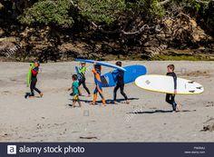 Local Children Going Surfing, Waipu Cove, Waipu, Northland, New Stock Photo, Royalty Free Image: 99327610 - Alamy