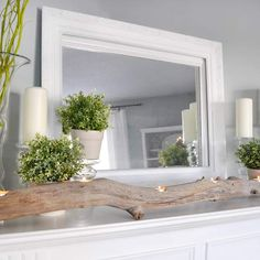 Driftwood, mantel decor, candles, plants