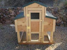 Little chicken coop