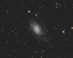 NGC 2403 is an intermediate spiral galaxy in Camelopardalis, and is an outlying member of the M81 galaxy group, lying at a distance of approx 8m light years.