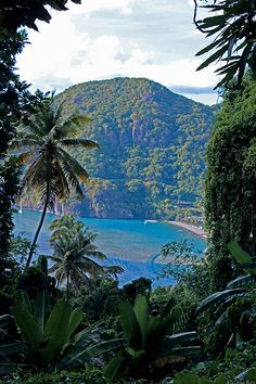 SAINT LUCIA! Hike on the mountain to see amazing Caribbean view in Saint Lucia! #Saintlucia