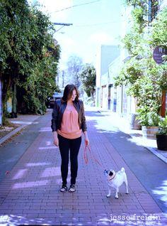 A Pug in the Mission: San Francisco Dog Photography - Jesse Freidin Dog Photographer